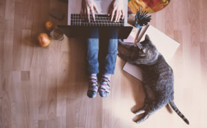 entrepreneur woman working from home on the floor with cat by her side